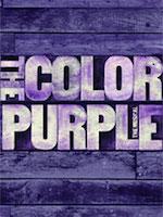 colorpurple